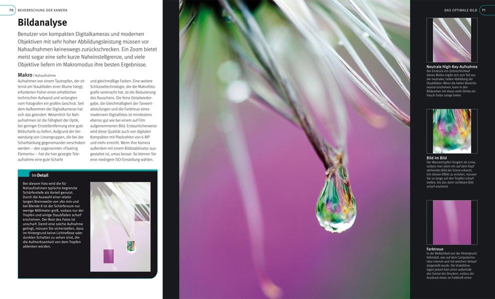 Bildanalyse aus dem Buch Digitale Fotografie die Profitechniken von Tom Ang