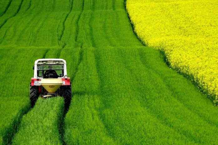 Bildbewertung Traktor Rapsfeld