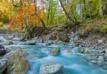 Herbst Fotografieren mit FIlter