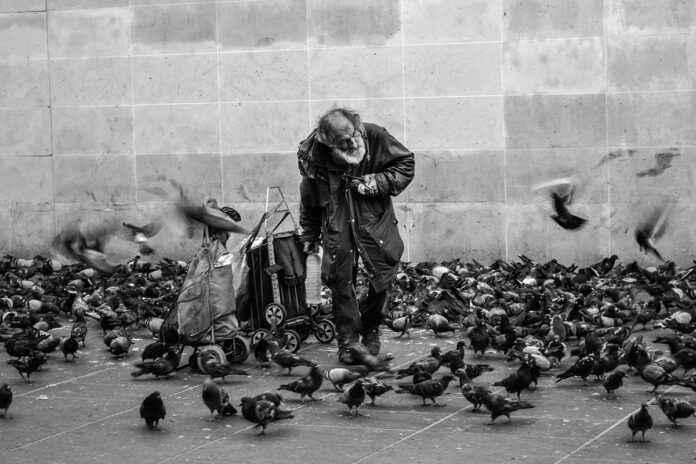 Streetfotografie Tauben